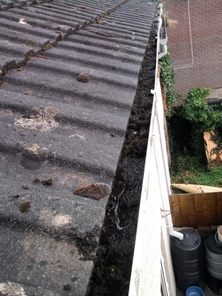 gutter-clearing-before